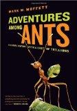 adventures-among-ants