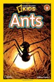 Ants-stewart