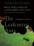 The-Leafcutter-Ants