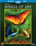 wings-of-life