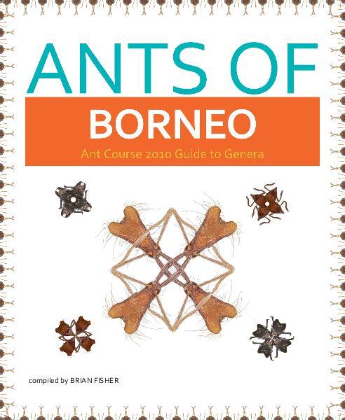 Ants-of-Borneo