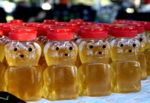 honey_bear_bottles-600x412